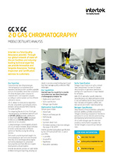 GC X GC 2-D Gas Chromatography Flyer cover
